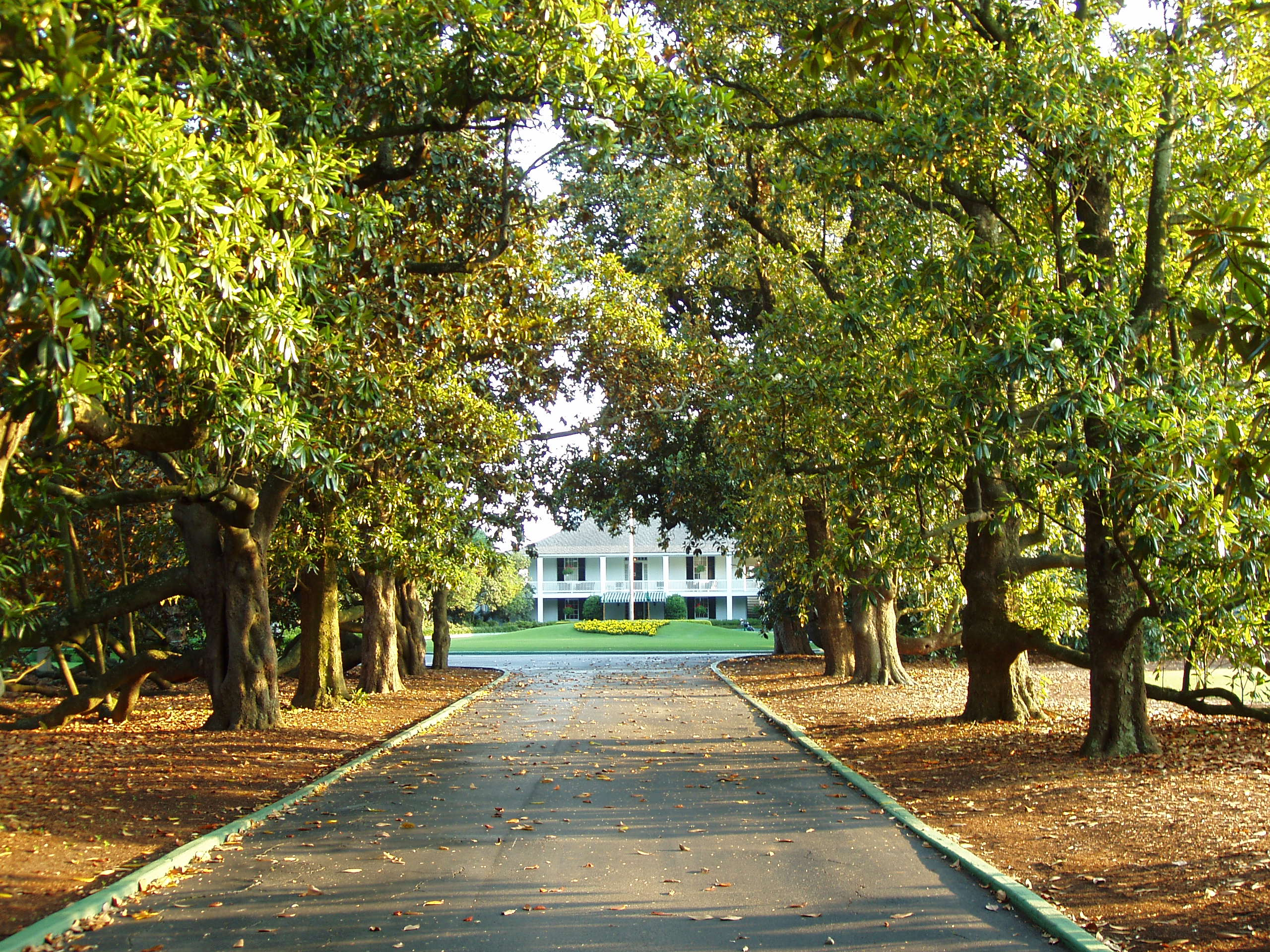 Caddying at augusta national a journey through orlando s best golf